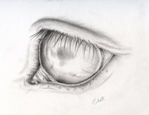 Oeil de chaval