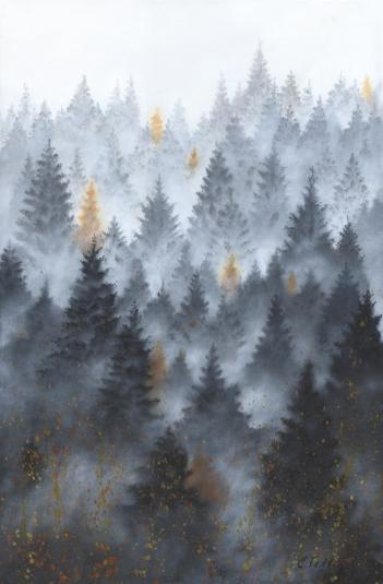 Forêt laurentienn