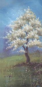 Pommiers en fleurs II